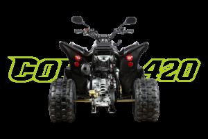 Cobra 420 Schwarz - Heck