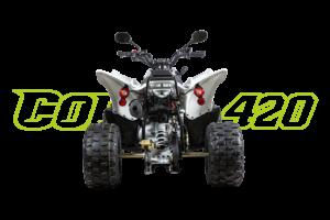 Cobra 420 Weiß - Heck