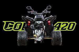 Cobra 420 SM Schwarz - Heck
