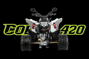 Cobra 420 SM Weiß - Heck